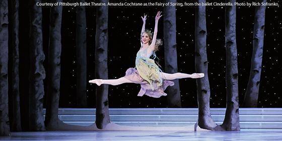 Dance the Ballet: Ballet Fairies