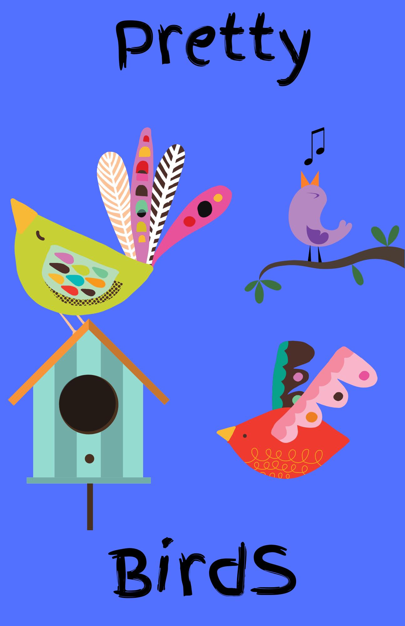 Facebook Live Preschool Storytime-Birds
